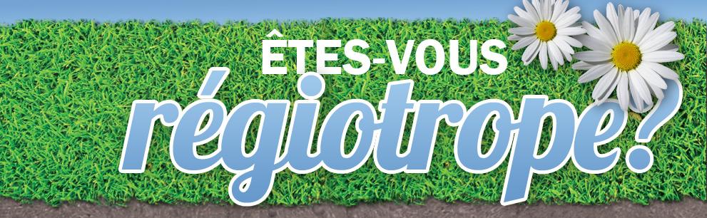 Freins et motivations des Franciliens candidats à une installation en région (Infographie)
