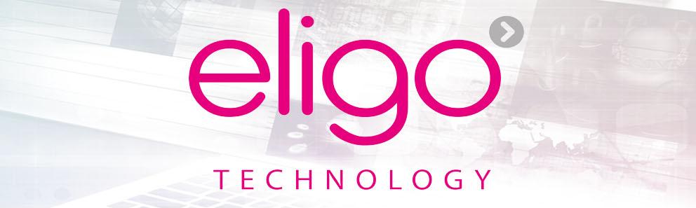 Eligo Fire & Security Careers