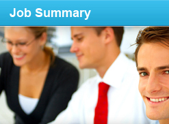 job summary