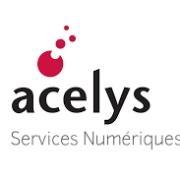 Company Logo ACELYS SERVICES NUMERIQUES
