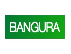 Company Logo Bangura Solutions Limited