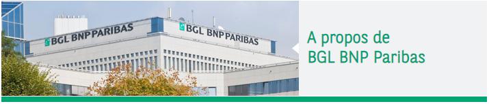 Company Branding Banner BNP Paribas