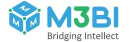 Company Logo M3bi LLC