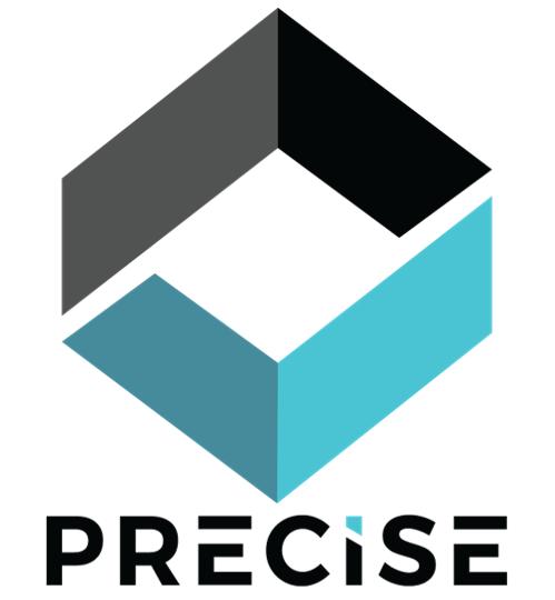 Company Logo Precise Software Solutions, Inc.