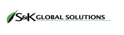 Company Logo PSG Global Solutions