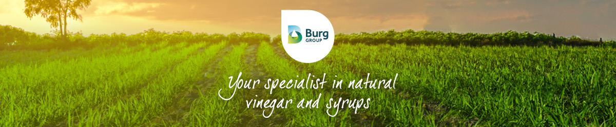Company Branding Banner T.a.v. Burg Groep B.V.