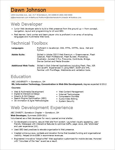 sle resume for an entry level it developer