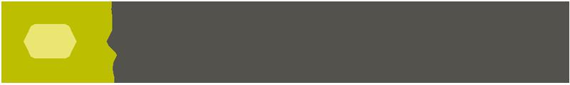 Pacsize Logo