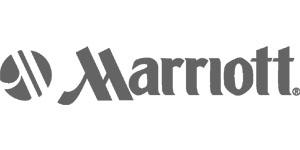 Company Logo Renaissance
