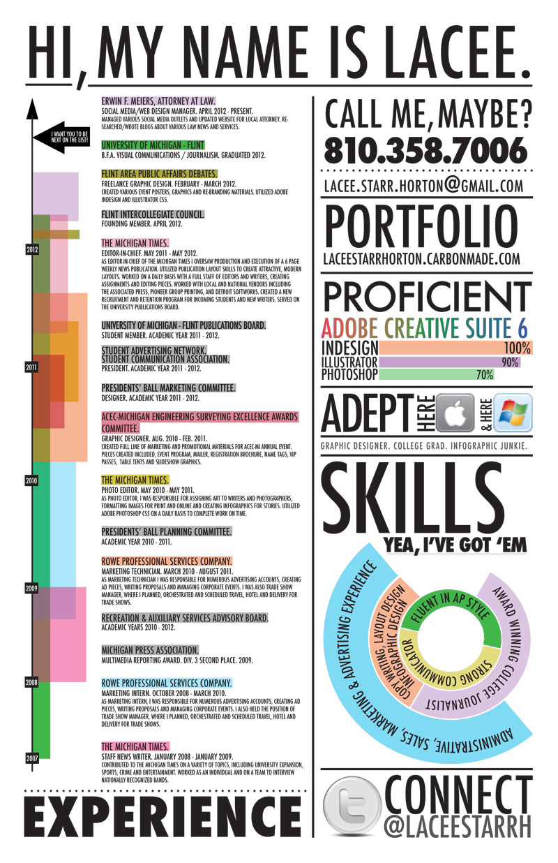 Best Infographic Resumes Monster Com