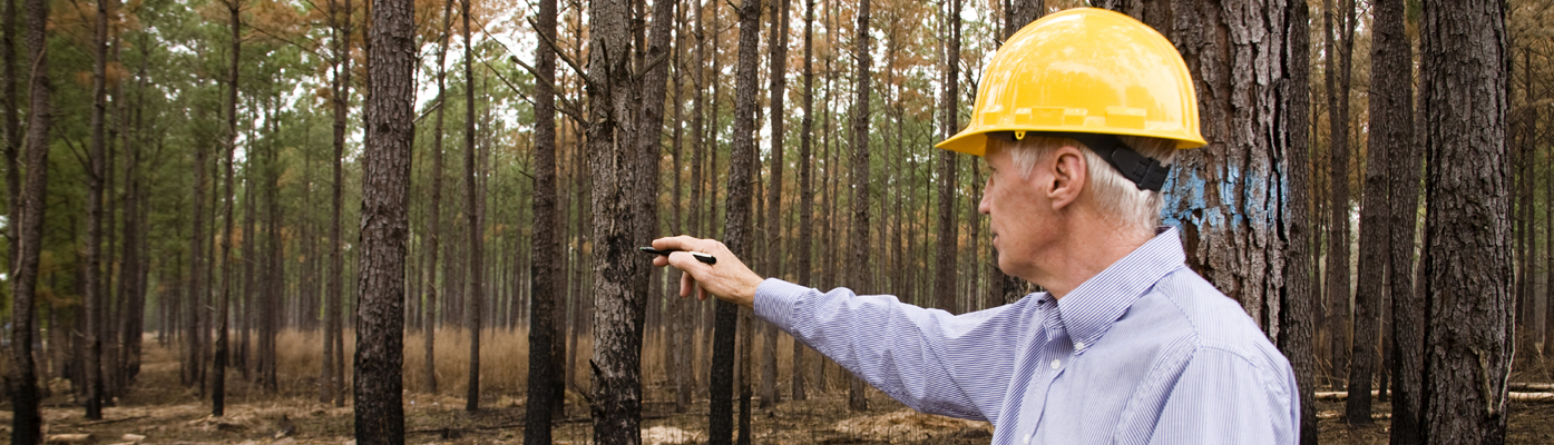 Environmental Careers Overview